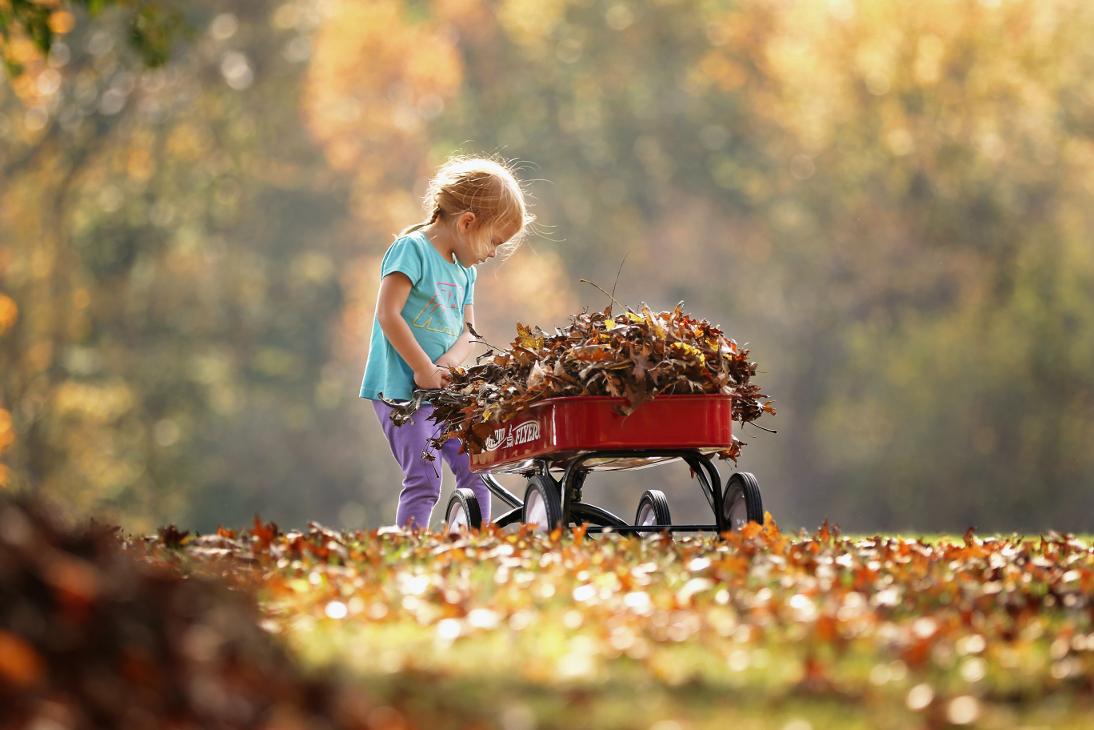 Sügis ja lehed on mõne jaoks rõõm, teise jaoks igavene peavalu